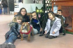 Animation Fred éducation canine / comportement du chien Jardinerie Castelli Nice 5 Décembre 2012